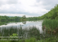Nescopeck State Park -1