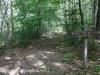 Nescopeck  State park  (18 of 36)