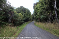 New Zealand Day 10 Port William hike park to Oban February 15 2019
