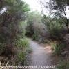 New-zealand-Day-Fifteen-Rotorua-lakefront-hike-1-of-36