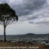 New-zealand-Day-Fifteen-Rotorua-lakefront-hike-13-of-36