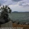New-zealand-Day-Fifteen-Rotorua-lakefront-hike-17-of-36