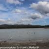 New-zealand-Day-Fifteen-Rotorua-lakefront-hike-4-of-36
