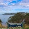 New-Zealand-Day-Eight-Stewart-Island-evening-walk-birds-7-of-16