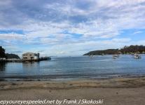New-Zealand-Day-Eight-Stewart-Island-evening-walk-1-of-21