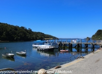 New-Zealand-Day-Eight-Stewart-Island-ferry-1-of-45