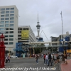 New-zealand-Day-Eighteen-Auckland-afternoon-walk-February-23-5-of-22