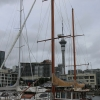 New-zealand-Day-Eighteen-Auckland-afternoon-walk-February-23-9-of-22