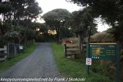 New Zealand Day Eleven Stewart Island Ackers Point walk February 16 2019