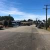 New-Zealand-Day-Four-Lake-Tepako-walk-20-of-30