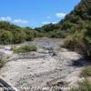 New-Zealand-Day-Fourteen-Rotorua-geysers-and-walk-4-of-31