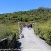 New-Zealand-Day-Fourteen-Rotorua-geysers-and-walk-7-of-31
