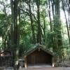 New-zealand-Day-Fourteen-rotorua-tamaki-Village-12-of-37