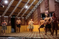 New Zealand Day Fourteen Rotorua Te Puia culture part two February 19 2019