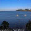 New-Zealand-Day-Nine-Stewart-Island-evening-hike-14-of-22