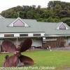 New-Zealand-Day-Nine-Stewart-Island-afternoon-hike-8-of-48
