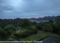 New-Zealand-Day-Nine-Stewart-Island-morning-drive-1-of-1-1