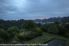 New Zealand Day Nine Stewart Island drive and tour morning February 14 2019