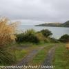 New-Zealand-Day-Nine-Stewart-Island-morning-drive-15-of-50