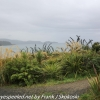 New-Zealand-Day-Nine-Stewart-Island-morning-drive-19-of-50
