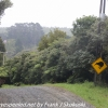 New-Zealand-Day-Nine-Stewart-Island-morning-drive-3-of-50