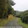 New-Zealand-Day-Nine-Stewart-Island-morning-drive-4-of-50