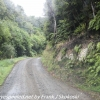 New-Zealand-Day-Nine-Stewart-Island-morning-drive-5-of-50