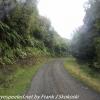 New-Zealand-Day-Nine-Stewart-Island-morning-drive-6-of-50