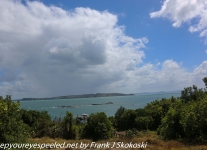 New-zealand-Day-Nineteen-Auckland-Tiritiri-Matangi-cruise-1-of-10