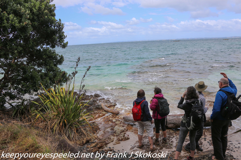 New-zealand-Day-Nineteen-Auckland-Tiritiri-Matangi-10-of-21