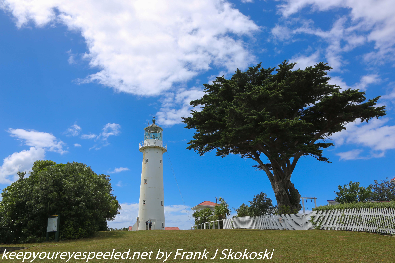 New-zealand-Day-Nineteen-Auckland-Tiritiri-Matangi-13-of-24