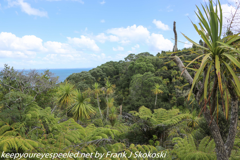 New-zealand-Day-Nineteen-Auckland-Tiritiri-Matangi-17-of-24