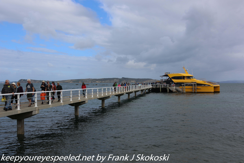 New-zealand-Day-Nineteen-Auckland-Tiritiri-Matangi-2-of-21