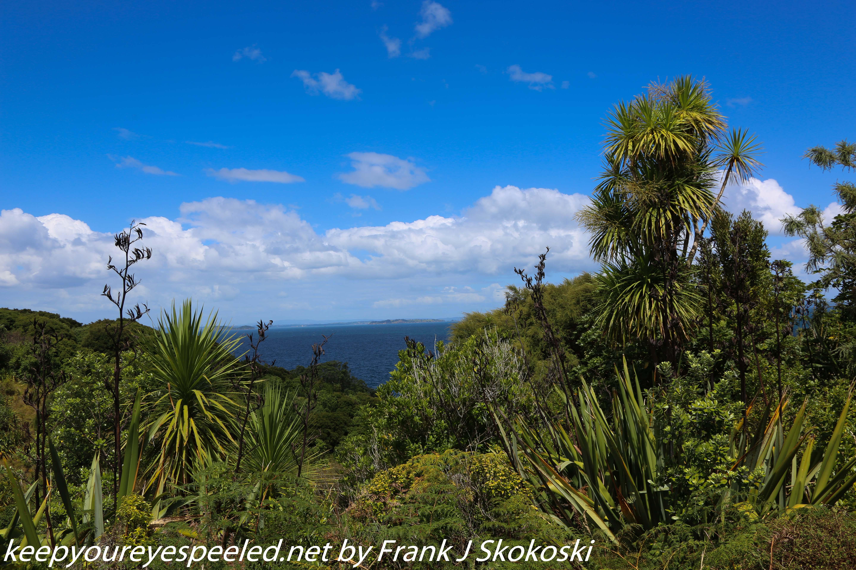 New-zealand-Day-Nineteen-Auckland-Tiritiri-Matangi-22-of-24