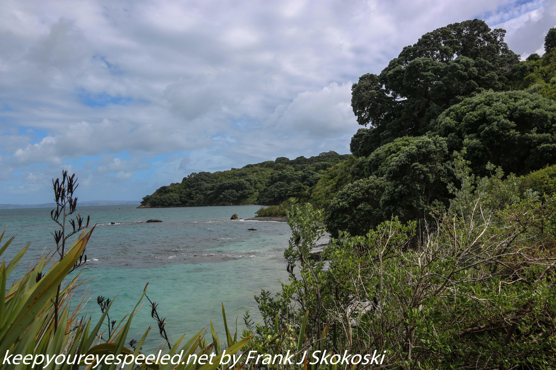 New-zealand-Day-Nineteen-Auckland-Tiritiri-Matangi-8-of-21