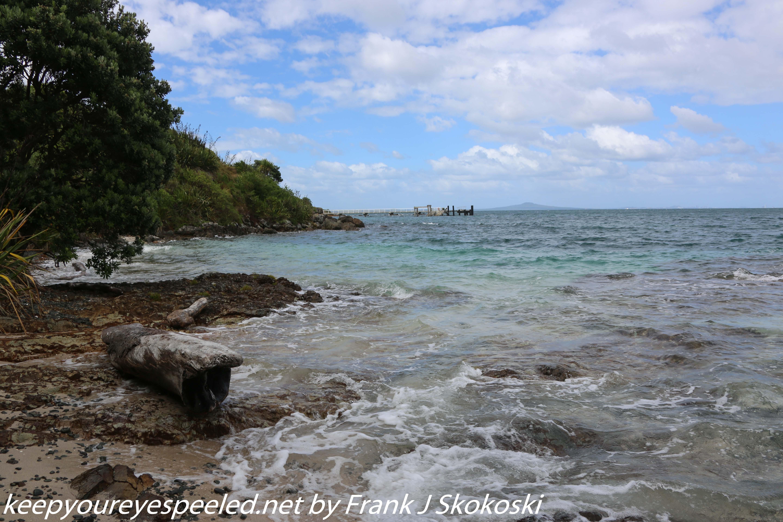 New-zealand-Day-Nineteen-Auckland-Tiritiri-Matangi-9-of-21