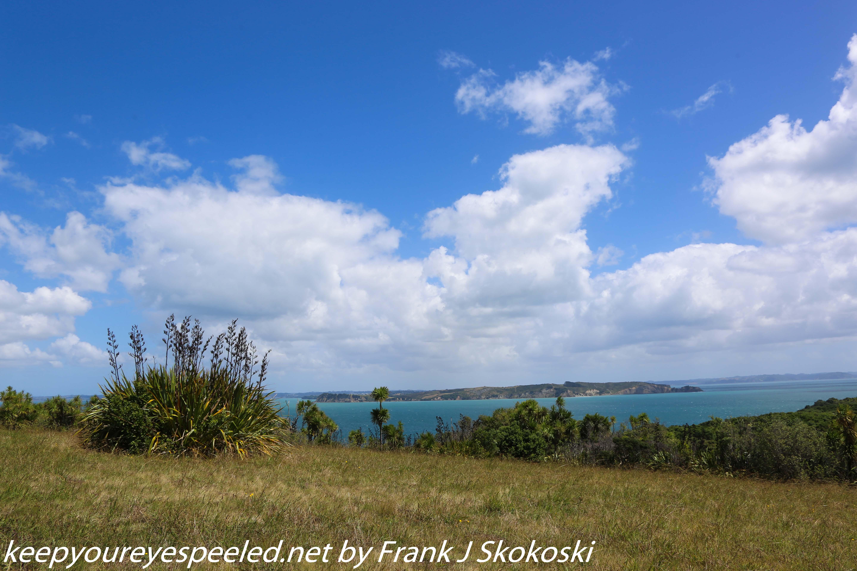 New-zealand-Day-Nineteen-Auckland-Tiritiri-Matangi-9-of-24