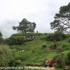 New-zealand-Day-Seventeen-Matamata-Hobbiton-part-two-February-22-17-of-45