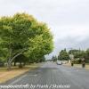 New-zealand-Day-Seventeen-Matamata-afternoon-walk-February-22-8-of-24