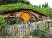New-zealand-Day-Seventeen-Matamata-Hobbiton-part-one-February-22-1-of-50