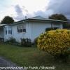 New-zealand-Day-Seventeen-Matamata-morning-walk-February-22-4-of-50