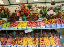 New-Zealand-Day-Six-Mount-Cook-to-Queenstown-fruit-stand-1-of-21