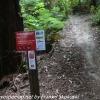 New-zealand-Day-Sixteen-Rotorua-morning-hike-20-of-48