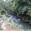 New-zealand-Day-Sixteen-Rotorua-morning-hike-8-of-48