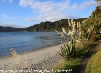 New-Zealand-Day-Ten-Stewart-Island-Rakiura-1-of-48