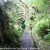 New-Zealand-Day-Ten-Stewart-Island-Rakiura-10-of-48