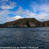 New-Zealand-Day-Thirteen-Dunedin-Otaga-Peniinsula-harbor-cruise-11-of-42