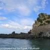 New-Zealand-Day-Thirteen-Dunedin-Otaga-Peniinsula-harbor-cruise-12-of-42