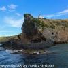 New-Zealand-Day-Thirteen-Dunedin-Otaga-Peniinsula-harbor-cruise-13-of-42