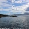 New-Zealand-Day-Thirteen-Dunedin-Otaga-Peniinsula-harbor-cruise-2-of-42